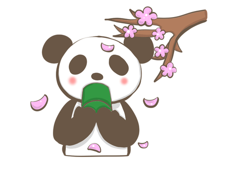 Panda drinking tea while watching the cherry blossoms