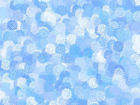 Gerbera (blue)