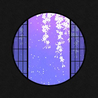 Watercolor round window material cherry blossom / purple
