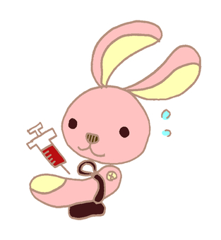 Blood collection rabbit