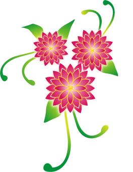 Flower of Bingo type