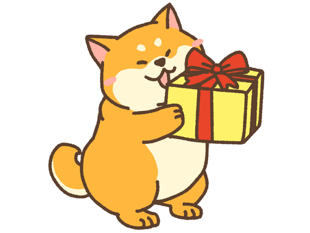 Surprise present 柴 2