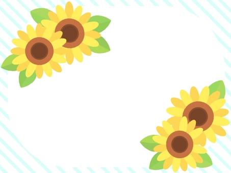 여름 06