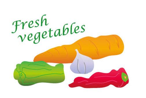 Ginseng, peppers and garlic vegetables illustration
