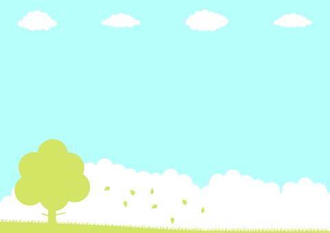 Trees fallen leaves blue sky