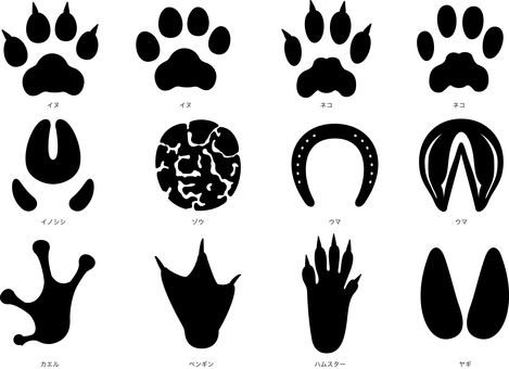 Animals Footprint Silhouette Set