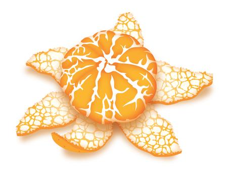 Mandarin orange (peel)