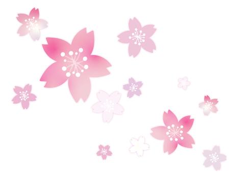 Cherry background 14