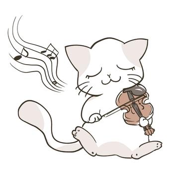 바이올린을 연주하는 고양이