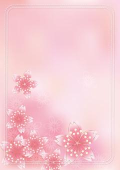 Sakura Sakura & Board 63