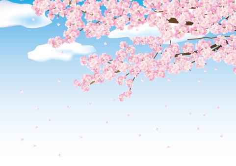 Spring frame 031