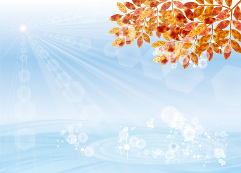 葉子染成秋色3