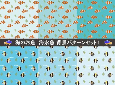 鹹水魚背景1