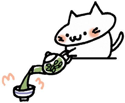 Cat putting tea in a cup