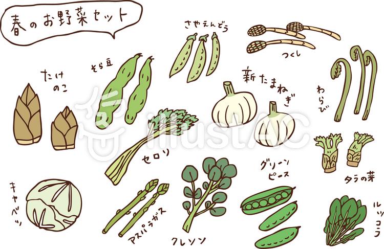 春のお野菜セット カラーのイラスト