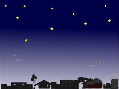 我想用鳥兒看星空