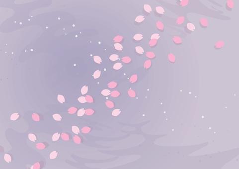 櫻花瓣漂浮在水面2