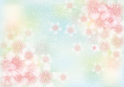 벚꽃의 꽃 148