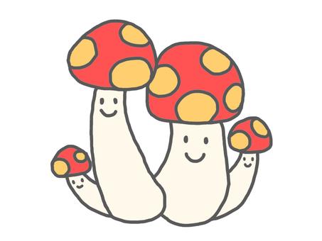 Parent and child of mushrooms