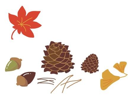 Pine cones 02