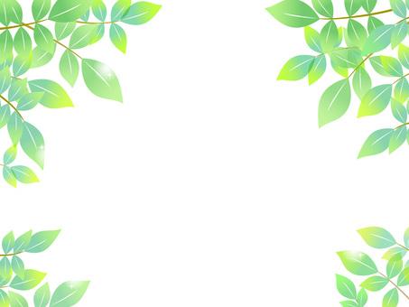 70402, fresh green frame 5
