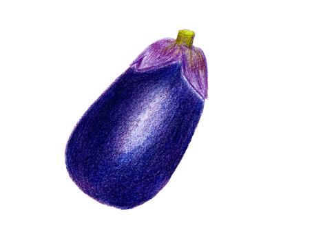 Kyoto Yamanashi eggplant (colored pencil drawing)