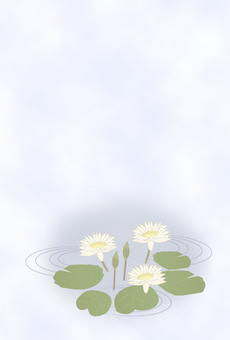 Water lily's mourning postcard design