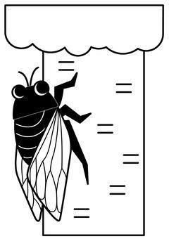 Cicada 1c