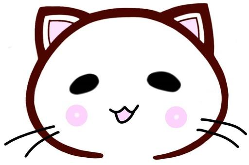 한가로이 온화 따끈 따끈 고양이