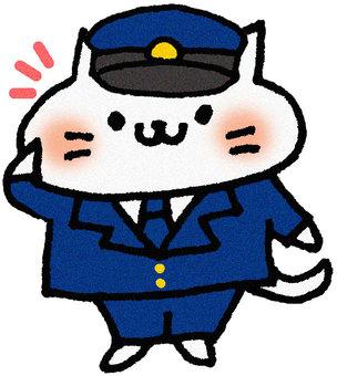 Cat in the cat