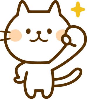 승리의 포즈 흰색 고양이