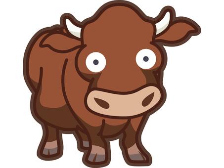 동물 - 소