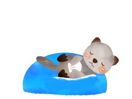 Floating sea otter