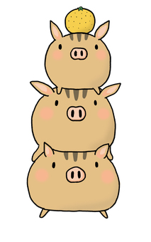 Wild boar 3 brothers