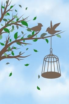 Bird illustrations (background sky blue)