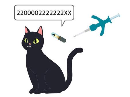 고양이 마이크로 칩