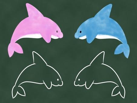 Dolphin, wind on a blackboard