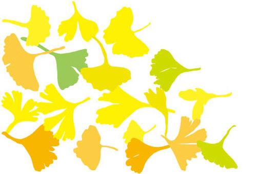 Gingko leaf wallpaper