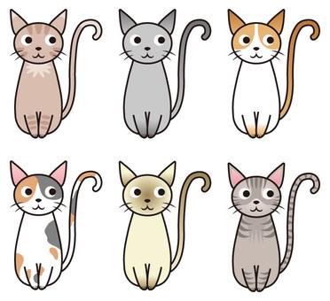 Cats / Variations