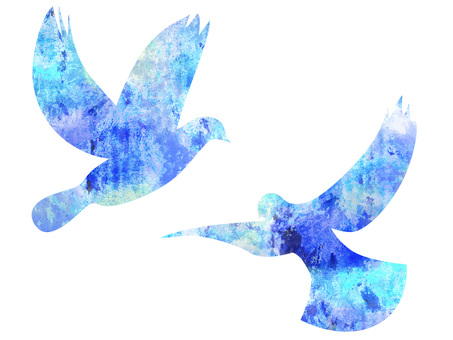 Blue bird _ rough 01