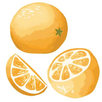 오렌지 세트