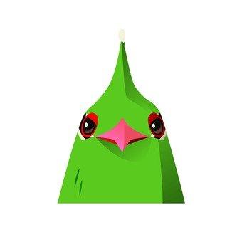 Front of green bird