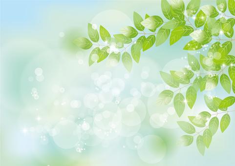 Glittering leaves & sky 68
