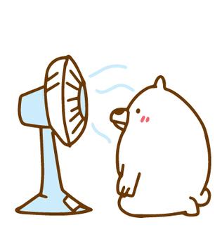 White bear not retired from fan