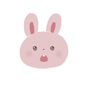 토끼 놀라