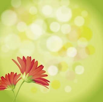 Flower Motif2