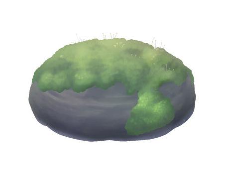 Moss growing stone