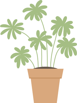 Potted plant 04