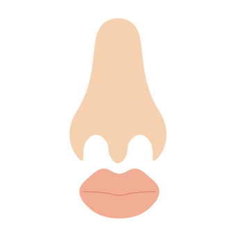 Image of nose and mouth