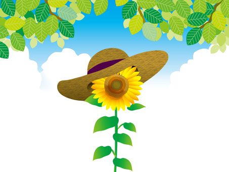Sunflowers and fresh green (7) Sky and Straw Hat